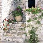 How to repair crumbling stone steps
