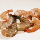 Quais criaturas marinhas se alimentam de camarão?