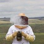 Cómo cosechar la miel sin un extractor