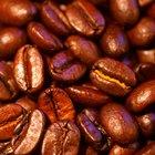 ¿Qué países cultivan granos de café?