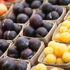 Foods Rich in Vitamin B17