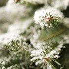 Como fazer neve artificial para enfeitar a árvore de Natal