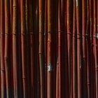 How to Use Rolls of Bamboo Fencing as Wall Covering