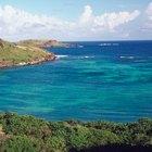 Cómo visitar Atlantis Resort Bahamas con poco presupuesto.
