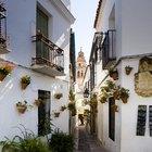 Qué hacer en Andalucía