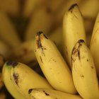 How to ripen bananas fast for banana bread