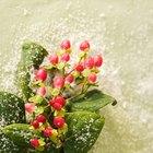 Ideas de decoración con nieve en aerosol