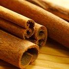 Semillas de árbol de canela