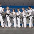 Different Martial Arts Stances