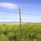 ¿Cuánto cuestan los materiales para una cerca de alambre de púas de 5 líneas?