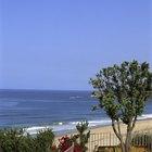 Lugares de campamento más cercanos a Newport Beach, California