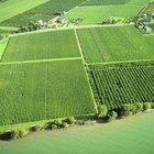 ¿Cómo obtener la certificación USDA Organic?
