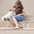 Como remover a inscrustação esbranquiçada de urina de cachorro de piso vinílico?