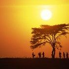 La vida de la gente en la sabana africana
