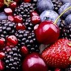 Fruit Food for Birds
