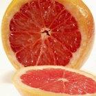 Cómo cultivar un pomelo 'Ruby Red' a partir de semilla