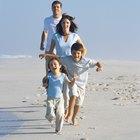 Cosas para hacer con los niños en Diciembre en St. Pete, Florida