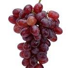 Do Red Grapes Have Fiber?
