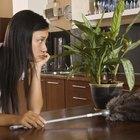 Cómo quitar el olor a ácaros del polvo de una habitación