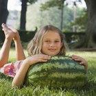 Como amadurecer uma melancia