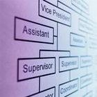 Vantagens e desvantagens de estruturas organizacionais