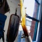 Cómo hacer cinta pegajosa para insectos