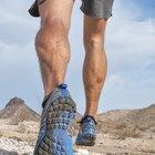 Calf Muscles & Tendons