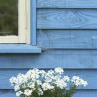 Tips for Painting Weatherboards