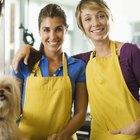 Ideas para salones de belleza para mascotas