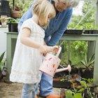 Cómo plantar con niños