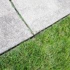 Como retirar o mato entre os pisos da calçada