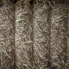 Use straw mulch to protect and insulate plants.