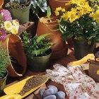 Controle orgânico de ferrugem em plantas