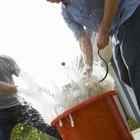 Como limpar espanadores de pó sujos