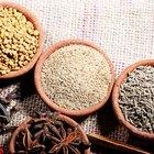 ¿Qué es la semilla de anís?