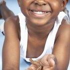 Actividades de orugas para niños