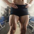 Facts on Vastus Medialis Muscle