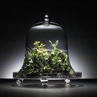 Decoração com elementos de vidro