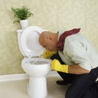 How to Remove Toilet Bowl Ring Stains