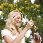 Cómo pasteurizar la miel