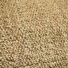 Cómo limpiar alfombras de polipropileno