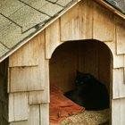 Cómo construir una caseta de perro para un pastor alemán