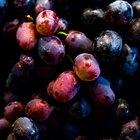 Como tirar suco de uva de tecidos coloridos