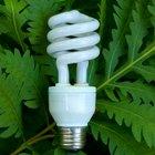 Relación entre el crecimiento de las plantas y la intensidad de la luz