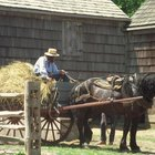 Amish Lifestyle Advantages & Disadvantages