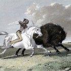 Los efectos del caballo sobre los nativos americanos