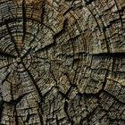 Qual é o tipo de madeira mais leve e mais resistente?