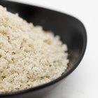 Rice vs. Bread