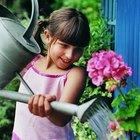 Actividades para niños en tiempos de primavera