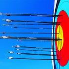The Advantages of Fiberglass Arrow Shafts in Archery
